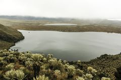 Atillo lagoon found in a moorland stock photos