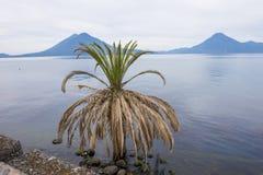 atitlan湖 库存图片