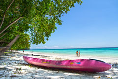 Atividade agradável na praia bonita foto de stock