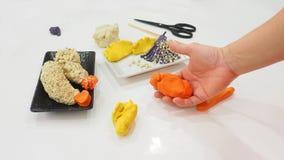 Atividade da arte do sculture do camarão FO japonesas do Tempura da argila do molde Fotos de Stock Royalty Free