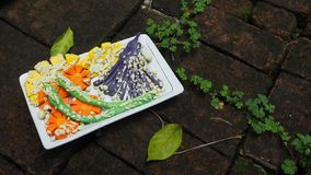 Atividade da arte da escultura do vegetal Jap ajustado do Tempura da argila do molde Imagens de Stock Royalty Free