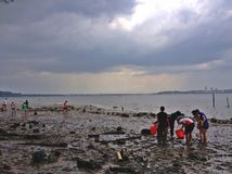 Atividade da praia - Singapura Fotos de Stock