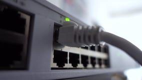 Atividade da rede no interruptor Indicação do funcionamento do equipamento de rede vídeos de arquivo