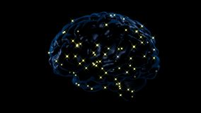 Atividade de cérebro video estoque