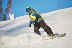 Atividade do inverno fotos de stock royalty free