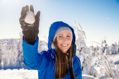 Atividade do inverno Imagens de Stock Royalty Free