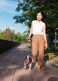 Atividade para um cão e um amante do cão Fotos de Stock