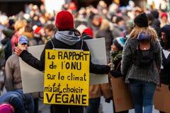 Ativistas que marcham para o ambiente imagens de stock
