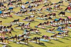 People Do Plank Pose In Atlanta Group Yoga Class. Atlanta, GA, USA - July 2, 2017:  Dozens of people do the plank pose as they take part in a free group yoga Royalty Free Stock Photo