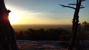 Atlanta linia horyzontu Z Greenery obraz royalty free