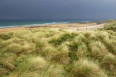 Atlantic Beach. A view at the Atlantic beach with grass in a foreground. Black Head, County Clare, Ireland Royalty Free Stock Photography