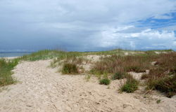 Atlantic Beach Dunes. Sea grass and foliage in the dunes under storm clouds in Atlantic Beach, North Carolina Stock Images
