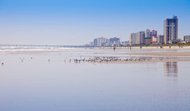 Atlantic Beach in Ponte Vedra, Florida Royalty Free Stock Image