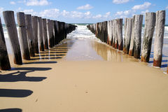 Atlantic beach with wooden poles breaking waves. Wooden breakwaters on a sunny european beach Royalty Free Stock Photography