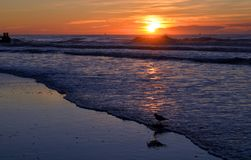 Atlantic City New Jersey Sunset Stock Image