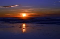 Atlantic City New Jersey Sunset Stock Photography