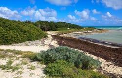 Atlantic coast. Cayo Guillermo. Cuba Royalty Free Stock Photography