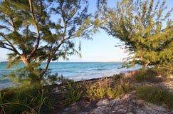 Atlantic coast. Cayo Guillermo. Cuba Royalty Free Stock Images
