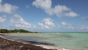 Atlantic coast. Cayo Guillermo. Stock Photography