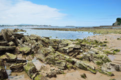 Atlantic coast at the low tide Stock Images