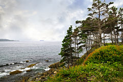 Atlantic coast in Newfoundland Royalty Free Stock Photography
