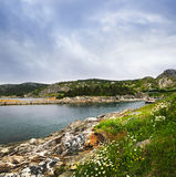 Atlantic coast in Newfoundland Stock Photography
