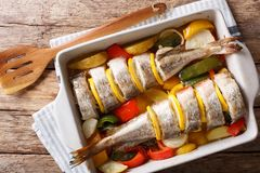 Atlantic cod baked with vegetables in a baking dish close up. Ho. Atlantic cod baked with vegetables in a baking dish close up on a table. Horizontal top view stock photo