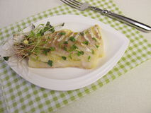 Atlantic cod fillet and shoot vegetables Royalty Free Stock Photo