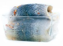 Marinaded Atlantic herring backs. Atlantic herring backs salted in spicy brine stock photo