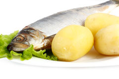 Atlantic herring with boiled potatoes Royalty Free Stock Photos