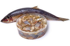 Atlantic herring carcass and pieces Royalty Free Stock Images