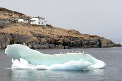 Atlantic Iceberg. This image was shot in Newfoundland, Canada and shows an iceberg with seagulls Stock Images