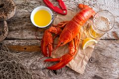 Atlantic Lobster Dinner. A delicious cooked atlantic lobster with melted butter, beer and lemon on a rustic wood background royalty free stock photography