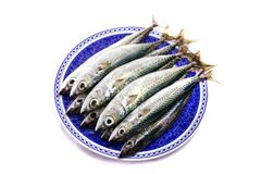 Atlantic mackerel Stock Photo
