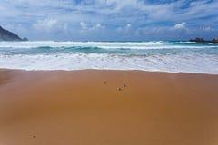 Atlantic ocean beach, Portugal Royalty Free Stock Photo