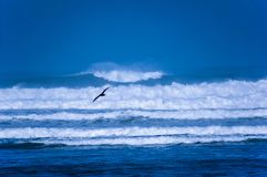 Atlantic ocean, Casablanca, Morokko. Royalty Free Stock Images