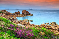 Atlantic ocean coast in Brittany region,Ploumanach,France,Europe. Amazing sunset with colorful flowers in Perros-Guirec on Pink Granite Coast,Brittany,France Royalty Free Stock Photo
