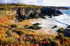 Atlantic ocean coast cliff at Sardao cape (Cabo Sardao), Alentej Stock Images