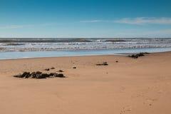 Atlantic Ocean coast, Morocco Stock Images