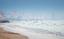 Atlantic ocean coast, Tangier, Morocco Stock Images