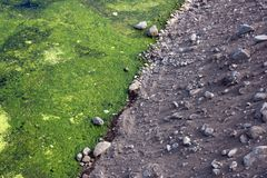 Atlantic Ocean, contrast pebbles and mud Stock Photos