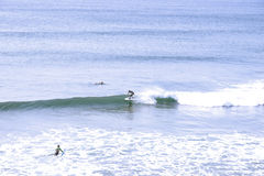 Atlantic ocean surfers Royalty Free Stock Images