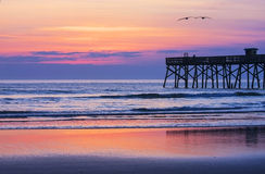Atlantic Ocean view before sunrise. Atlantic Ocean view with a pier and two flying pelican before sunrise. Atlantic Ocean beach in Florida Stock Image