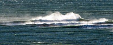 Atlantic Ocean vinkar i Patagonia Royaltyfria Bilder