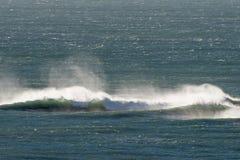 Atlantic Ocean vinkar i Patagonia Arkivbilder