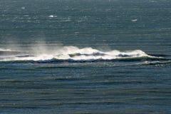 Atlantic Ocean vinkar i Patagonia Royaltyfri Fotografi