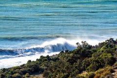 Atlantic Ocean vinkar i Patagonia Royaltyfri Bild