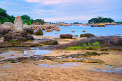 Atlantic Pink Granite Coast by Tregastes, Brittany, France Stock Image