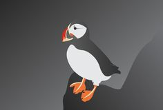 Atlantic Puffin. Beautiful wild Atlantic Puffin black and white royalty free illustration