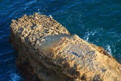 Atlantic rocky coastAlgarve, Portugal. Stock Photo